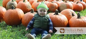 pumpkin sale (1)